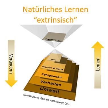 """Natürliches Lernen """"extrinsisch"""""""