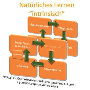 """Natürliches Lernen """"intrinsisch"""""""