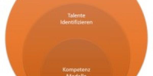 January 09. to 13., 2017 / Mallorca –  HR Talent Management Workshop